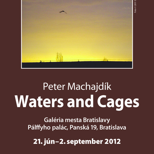 WATERS AND CAGES (excerpt) by Peter Machajdík