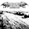 Avenged Sevenfold - Crossroads Bass Cover