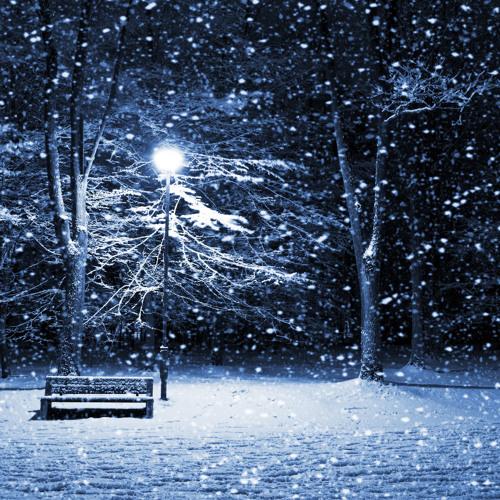 r4veNNN - Wintermärchen 2k13