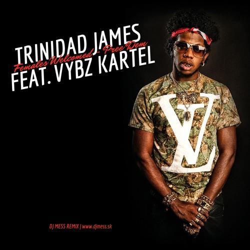 Trinidad James feat. Vybz Kartel - Females Welcomed / Pree Dem (Dj MeSs Remix)