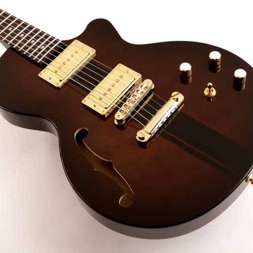 Moniker Guitars: Brown Reedsdale Semi-Hollow Demo