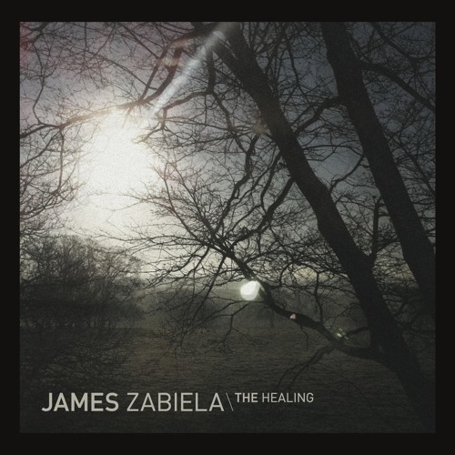 James Zabiela 'The Healing' (Born Electric)