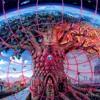 Download Brad Jennings and Reza Nasseri - Snozberry Jam (Acoustic Version) Mp3