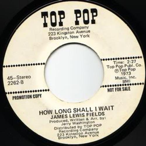 James Lewis Fields - How Long Shall I Wait (Dj Prime Extended Edit) test