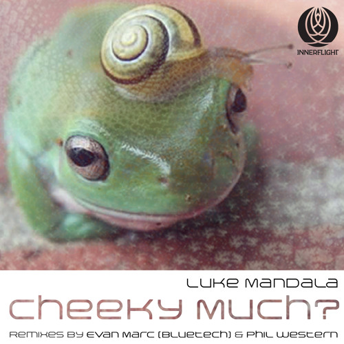 Luke Mandala - Cheeky Waggish [Innerflight Music](190kpbs)