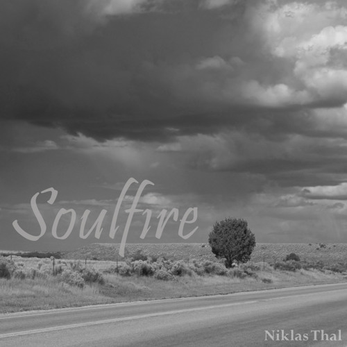 Niklas Thal - Soulfire (Original Mix)