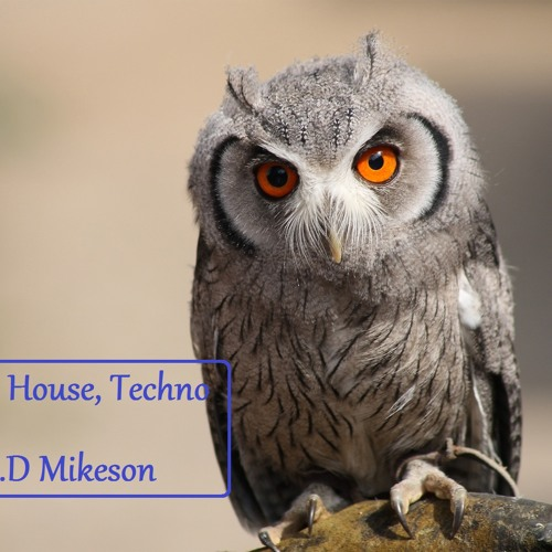 Deep-Tech House, Techno Mix by Mr.D Mikeson
