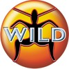 DJ Ricky D - Wild FM Tribute 1998 - 2003 (mix cd preview)