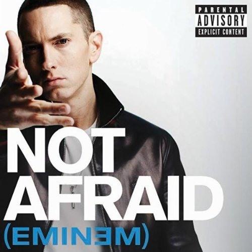 Eminem - Not Afraid Remix (Sabri's emini Remix)