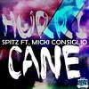 Hurricane feat Micki Consiglio