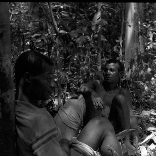 BaAka men's hunting sounds [10/21] (Central African Republic) [1997 21 2 17 A 10]
