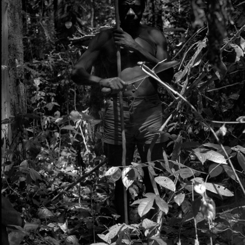 BaAka men singing in the forest [18/21] (Central African Republic, 1987) [1997 21 2 17 B 6]