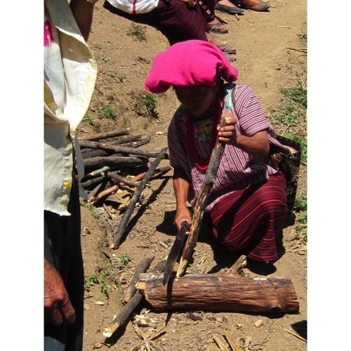 Global activism: Sustainability in Guatemala