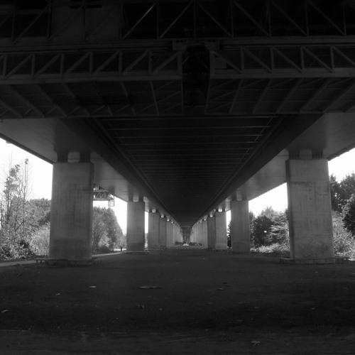 Under the M5 bridge, Avonmouth side