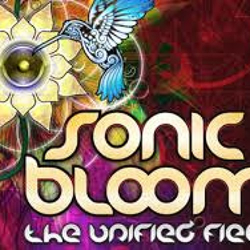 Sonic Bloom 2013 Preparty Pt 2
