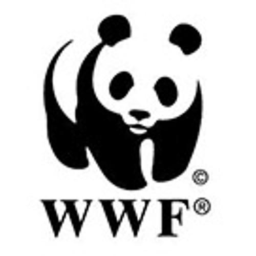 WWF - Masa Depan