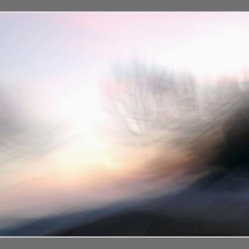 Arbre transparence by Julien Boulier (14/07/2009) Album Resolution 2009