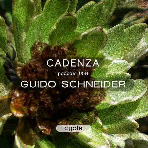 Cadenza Podcast | 058 – Guido Schneider (Cycle)