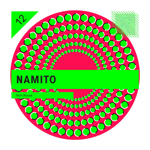 Riemann Kollektion 12 feat Namito DEMO SONG (by Florian Meindl)