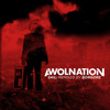 AWOLNATION - Sail (Borgore Remix)