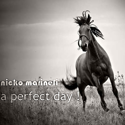 A Perfect Day !