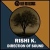 Rishi K. - Direction Of Sound (Sebb Aston Remix) Out Now mp3