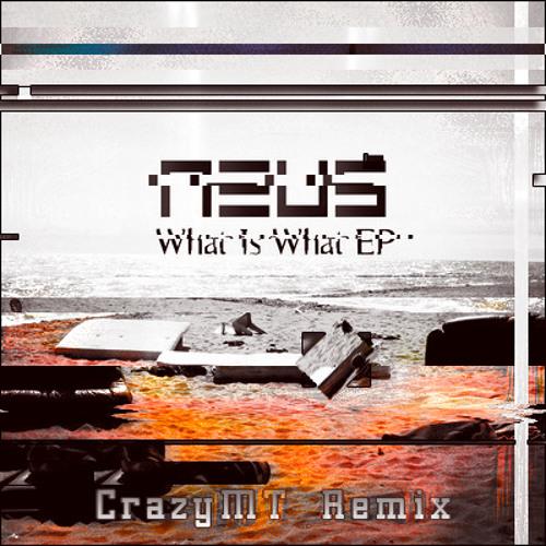 Neus - What Is What (CrazyMT Remix) (Alternative version)