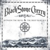 Black Stone Cherry -  Killing Floor