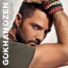 Gokhan Ozen - Ne Farkeder mp3