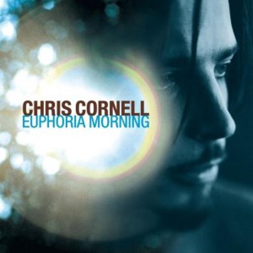Chris Cornell - When I'm Down (Piano)