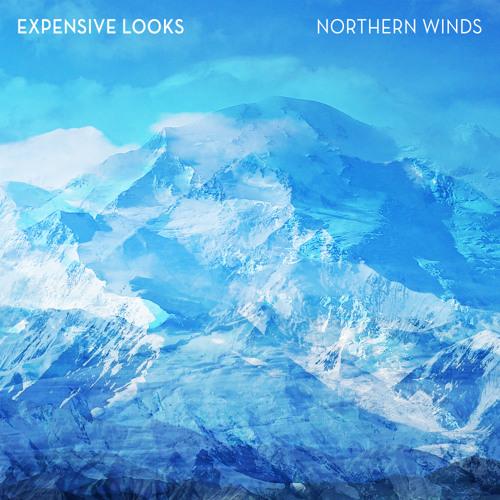 Expensive Looks - Idol