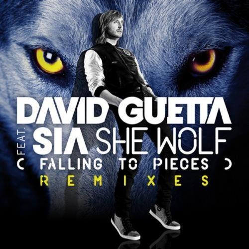 David Gueta - She Wolf (Liron Bootleg) DEMO