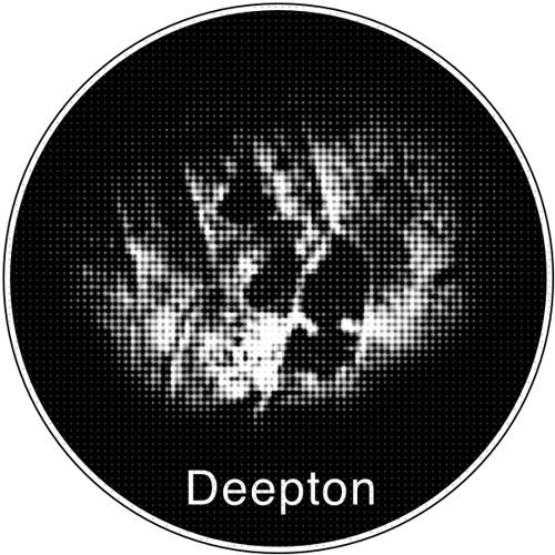 Deepton.oo5 by Alex Meshkov, www.deepton.com