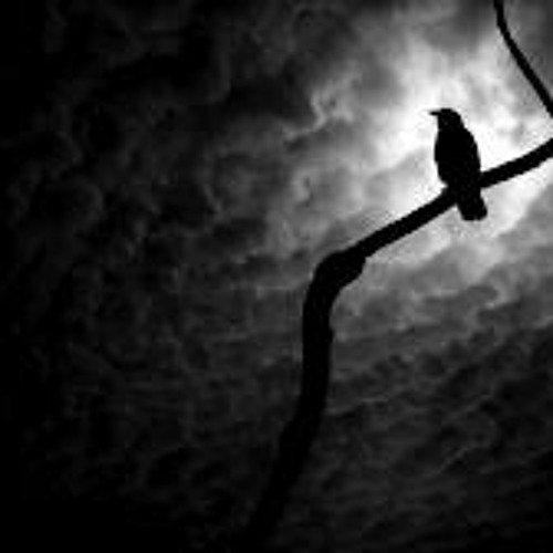 -The Crows Are calling- Instrumental-