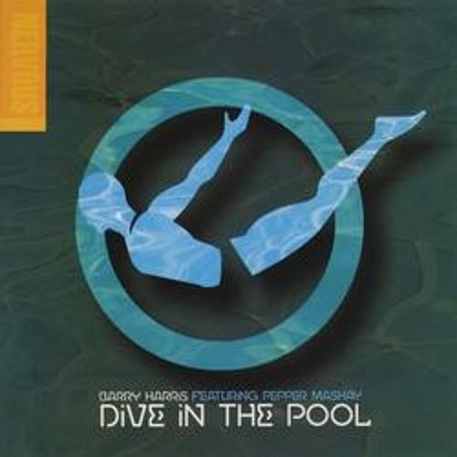 Dive In The Pool (Brian Mart Bien Recia Remix)(demo)