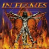 Swim (In Flames cover)