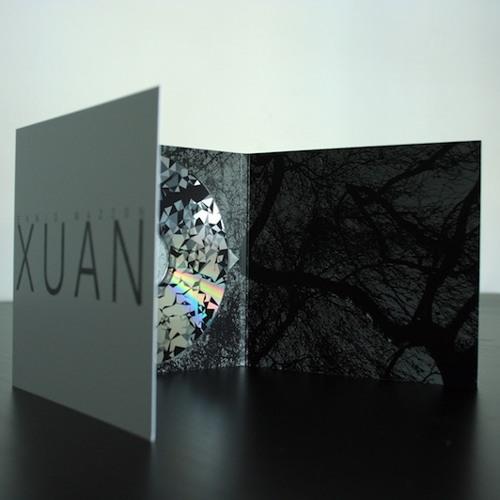 [NPG017] Ennio Mazzon - Xuan [excerpt n.2]