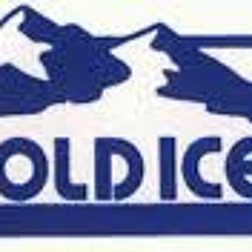 Ice Pak #82