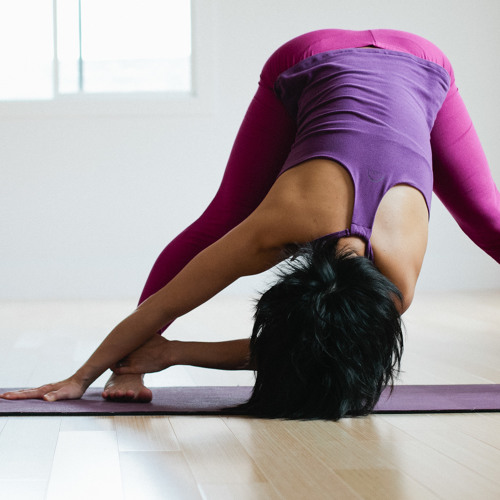 Forrest Yoga Twists and Forward Bends (Level 2-3; Turn Signal, Roadkill & Hammock; 1 hr 36 min)