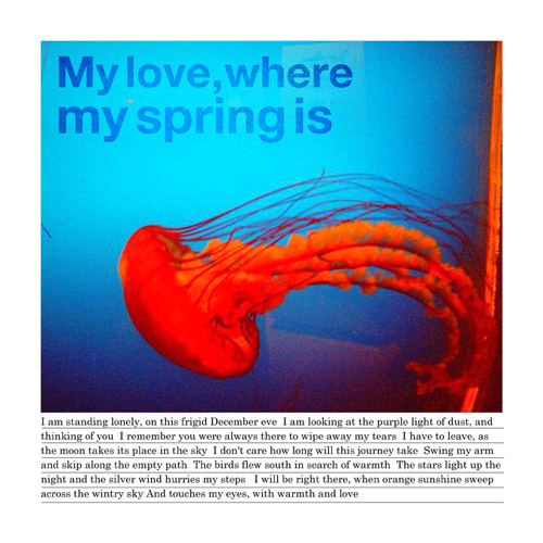 My love, where my spring is