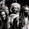 Israel Vibration Mix
