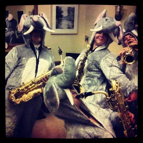 Baby Elephant Walk - Sforzsaxo Saxophone Quartet