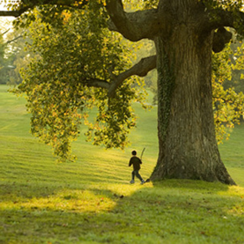 2. The Boy At Play (The Boy & The Tree)