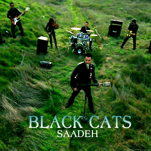 Black Cats - Saadeh