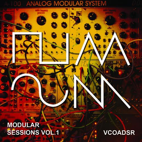 Modular Sessions Vol.1 - In The Machine