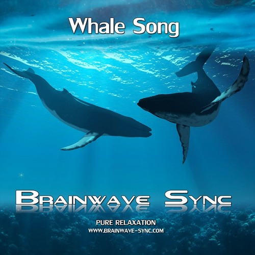 Whale Song - the Ocean - Sample