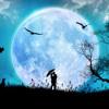 Luna by Alessandro Safina
