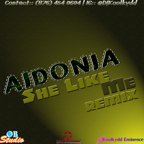 Aidonia - She Like Me - [Clean][Church Money Riddim] Remix 2013