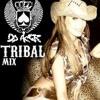 LO MEJOR DEL TRIBAL - DJ ACER