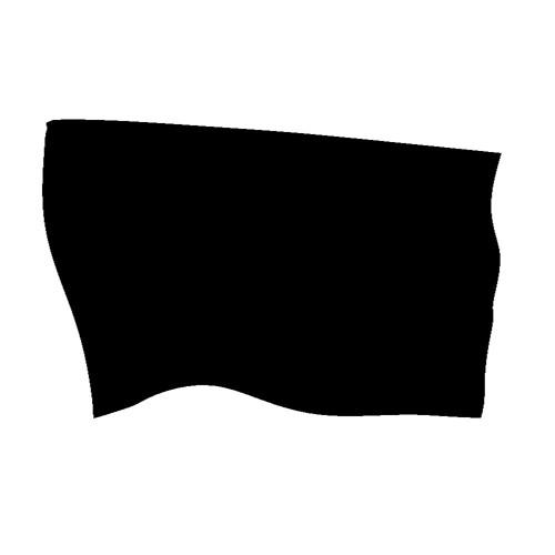 Black Flag (Produced By Reddrum)
